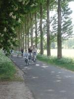 fietstocht Frisselstein 051.jpg